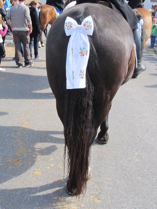 Zadek koně